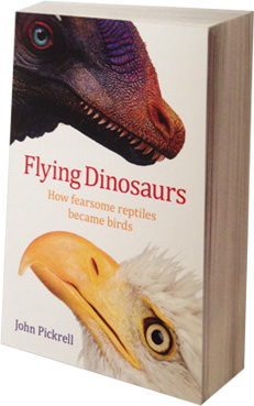 Flying Dinosaurs: a book review